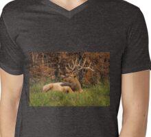 REGAL REST Mens V-Neck T-Shirt