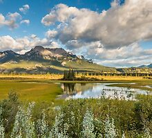 OF MEADOWS AND MOUNTAINS by Sandy Stewart