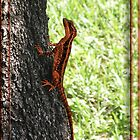 The Rusty Lizard by GolemAura