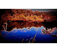 oyster creek waterhole 2016 Photographic Print