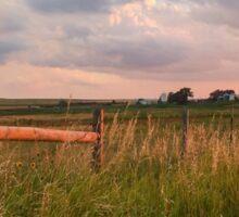 Country Roadside Sunset Sticker