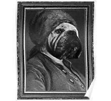 Bull Franklin Poster