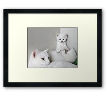 We`s Only Playing Momma Framed Print