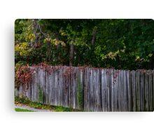 Fall Fence Canvas Print
