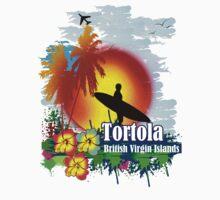 Sunset In Tortola by dejava