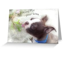 Sorry For Your Loss ~ Boston Terrier Greeting Card Greeting Card