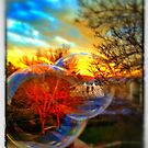 Bubbles at Sunset by Rachelgold