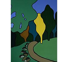 Colourful Kaimai Trail, New Zealand Photographic Print