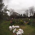 Community garden Canberra by Tom McDonnell