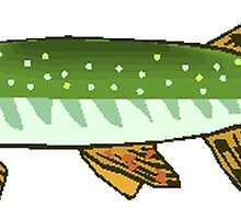 Northern Pike by kwg2200