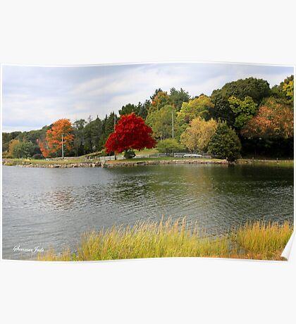 Autumn View of the Mystic River  Poster