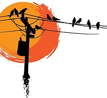 Birds on Wires with Sunset by mylesantstudios