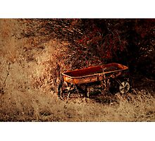 The Wagon Photographic Print