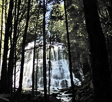 Nelson Falls by Judi Rustage