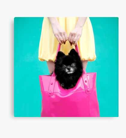 Doggie Bag Canvas Print