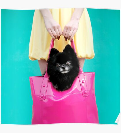 Doggie Bag Poster