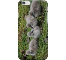 Baby Swans iPhone Case/Skin