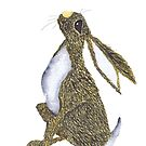 GAZING HARE by Hares & Critters