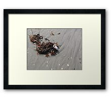 Beach Creature With Sea Painting Framed Print