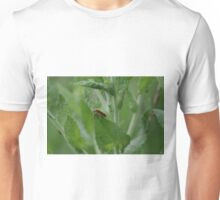 Red Soldier Beetle  Unisex T-Shirt