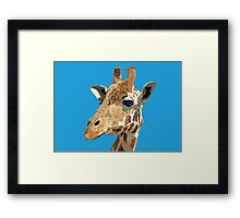 Proud Giraffe  Framed Print