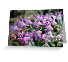 Frothy Purple Greeting Card