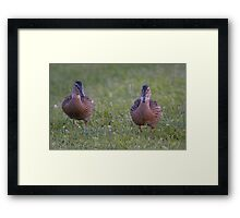 Slow Down Framed Print