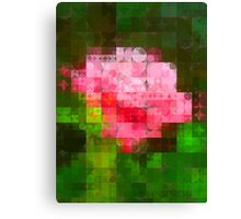 Pink Roses in Anzures 3 Abstract Circles 2 Canvas Print