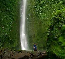 Sahwartik Waterfall - Pohnpei, Micronesia by Alex Zuccarelli