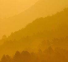 Golden Haze - Jirisan, South Korea by Alex Zuccarelli