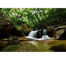 Forest Waterfall - Songnisan, South Korea Photographic Print