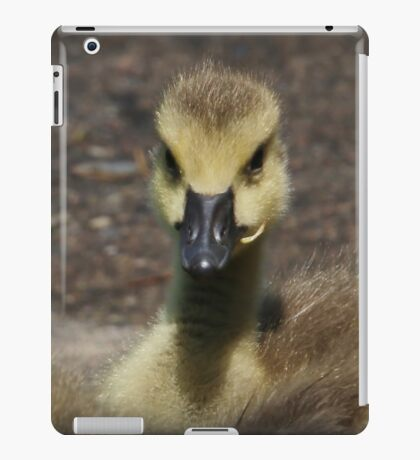 Featherless Fluff iPad Case/Skin