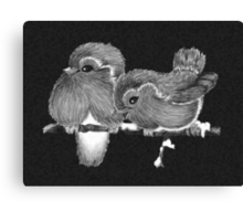 Feathered Friends with Charcoal Canvas Print