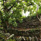 Nan Madol Panorama - Pohnpei, Micronesia by Alex Zuccarelli