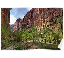Zion Valley Poster
