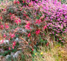 Roadside  Flowers, Donegal, Ireland Sticker