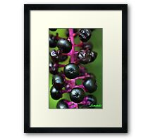 Bane Berries Framed Print