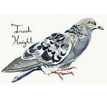 Trash Knight Pigeon Photographic Print
