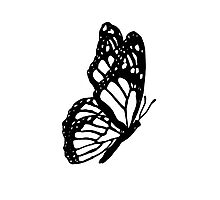 Black and White Butterfly Photographic Print