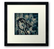 Rusty Lock & Chain Framed Print