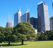 Royal Botanic Gardens Sydney by martinberry