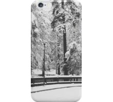 January Snow iPhone Case/Skin