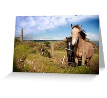 a pair of beautiful Irish horses and ancient round tower Greeting Card