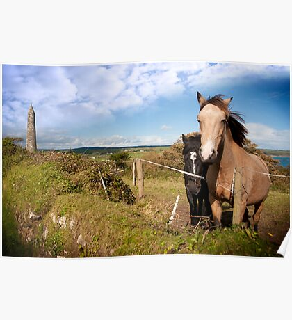a pair of beautiful Irish horses and ancient round tower Poster