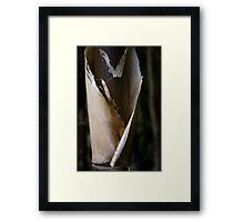 All Heart (Black Bamboo Sheath) Framed Print