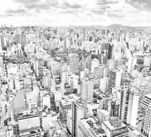 View of Sao Paulo, Brazil by gianliguori