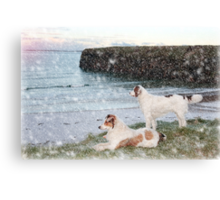 beach view with two dogs Canvas Print