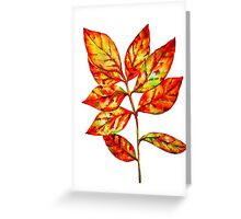 watercolor colourful autumn leaf Greeting Card