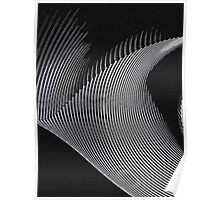 Gray waves, line art, curves, abstract pattern Poster