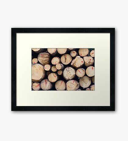 tree trunk Framed Print